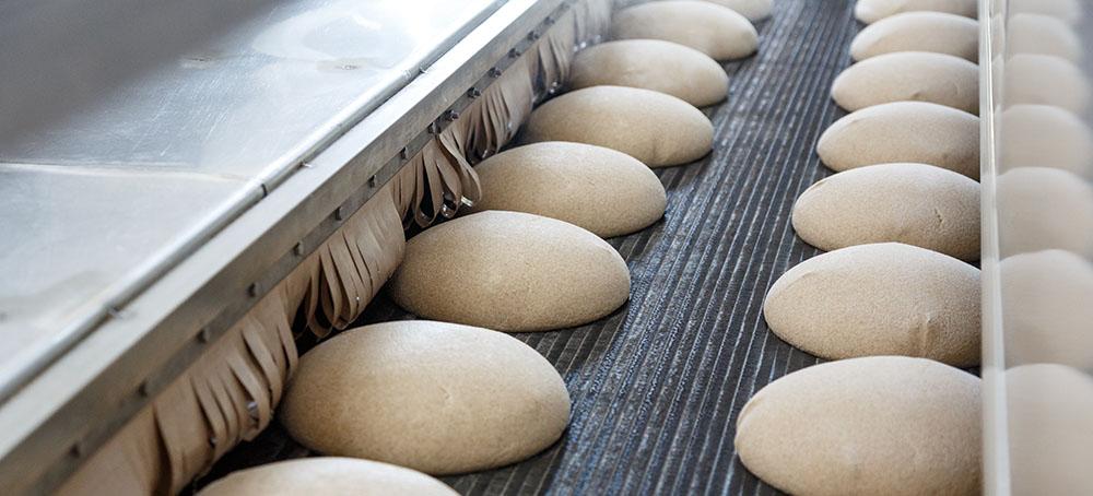 Cámara de fermentación de masa de pan