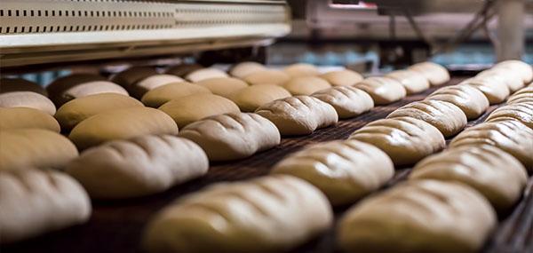 Maquinaria producción pan panadería