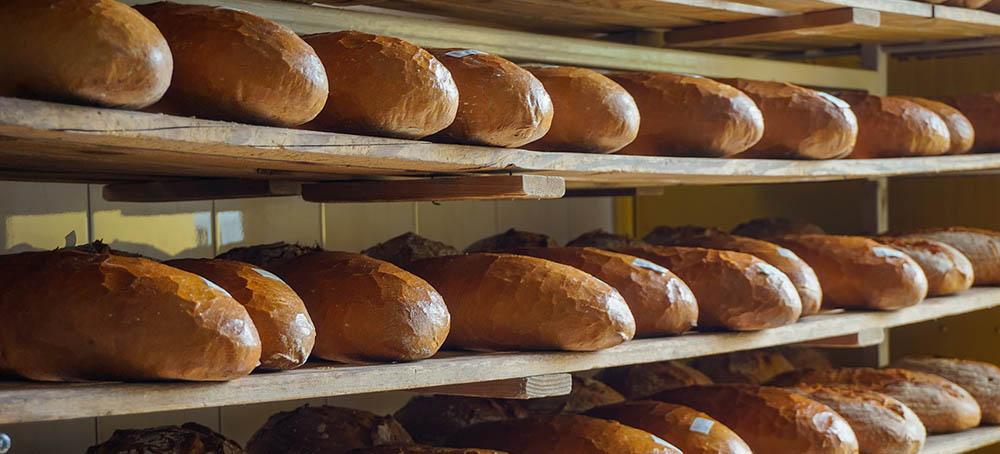 Moldeadoras de barras de pan