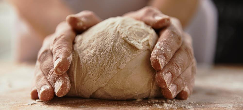 Cámara fermentadora masa de pan