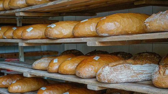 Formadoras de barra de pan