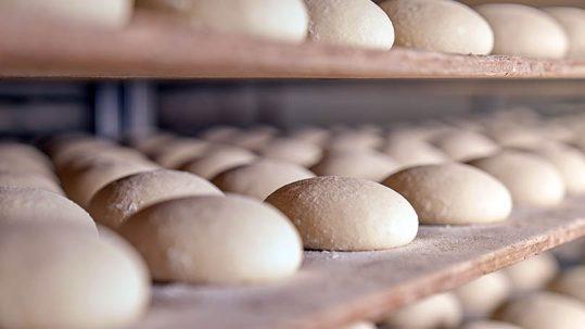 Cámara de fermentación panadería